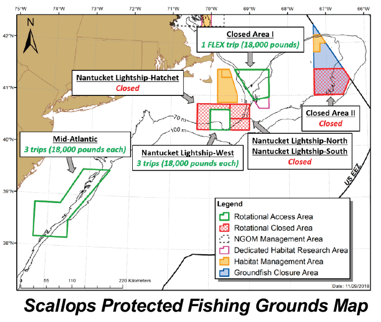 Scallops Protected Fishing Grounds